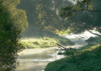 Zespół Środowiska i Krajobrazu
